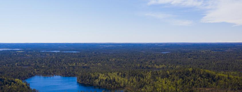 Ilmakuva, jossa näkyy vesistöä ja metsää kesällä.